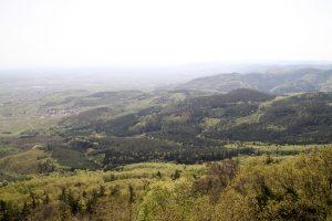 Vosges Valley France