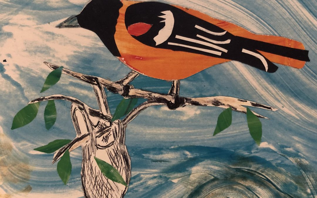 The Oriole: by guest artist and poet, chorister and pianist, Anne Martin